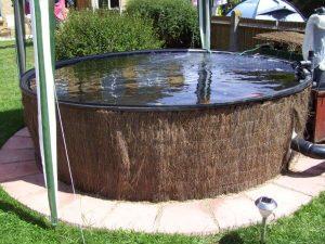Paul Miller Raised Koi Pond Design